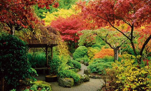 Visit the beautiful Japanese Garden in the Butchart Gardens, Canada